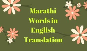 Marathi words translation in English In Beautiful Pictures